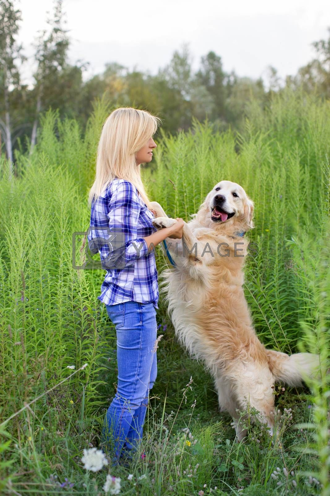 Girl walking with a dog on a green meadow