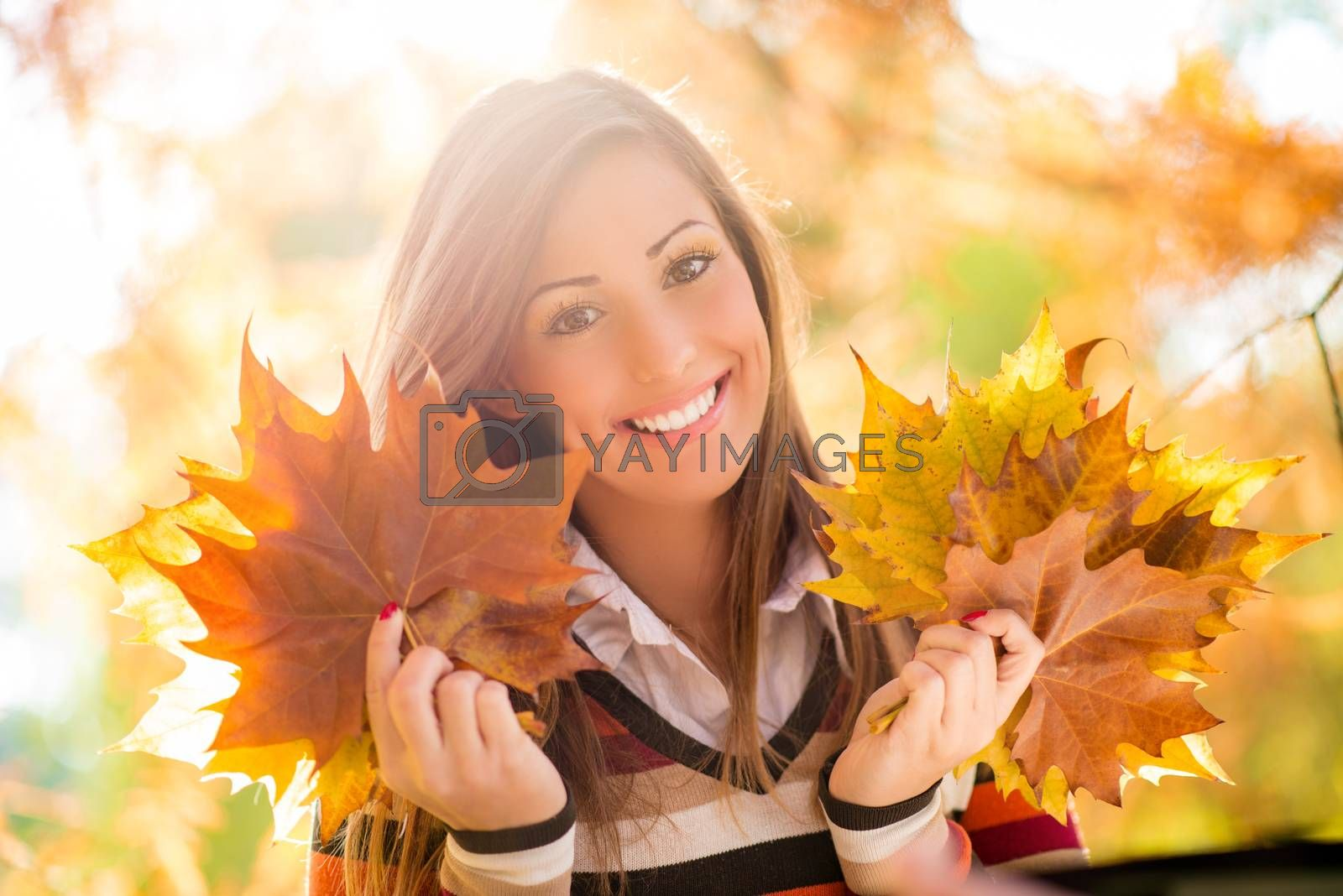 Cute young woman enjoying in sunny forest in autumn colors. She is holding golden yellow leaves. Looking at camera.