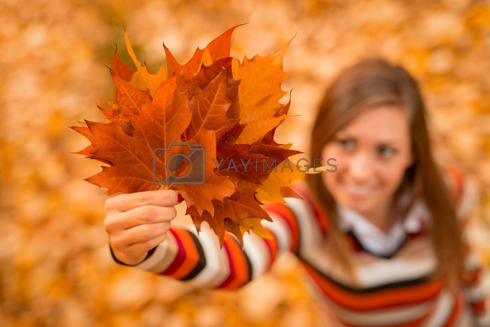 Close-up of a young woman enjoying in sunny forest in autumn colors. She is holding golden leaves. Selective focus. Focus on foreground, on leaf.