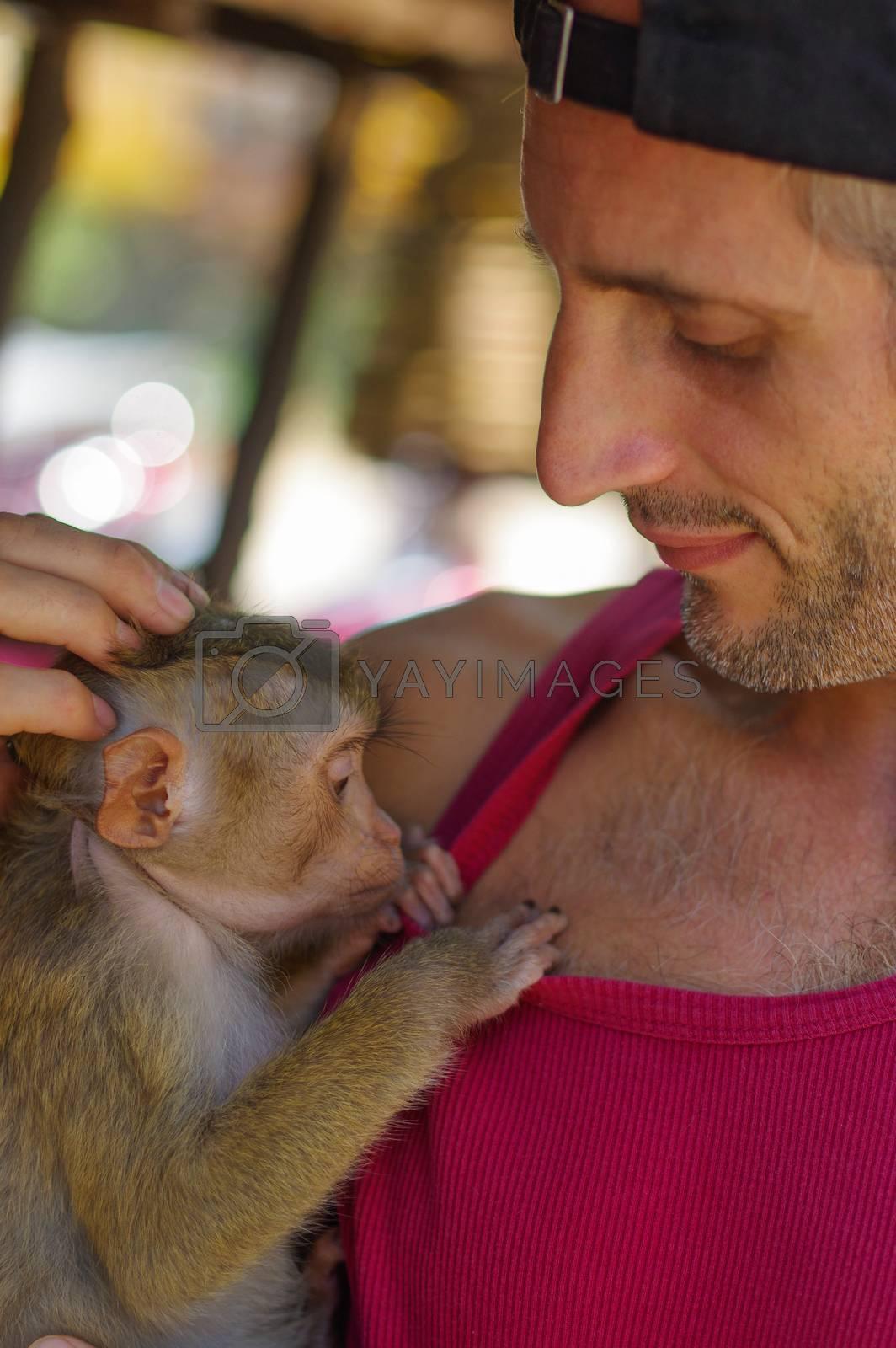 A man holds a young Rhesus Macaque Macaca mulatta on the arm. Thailand