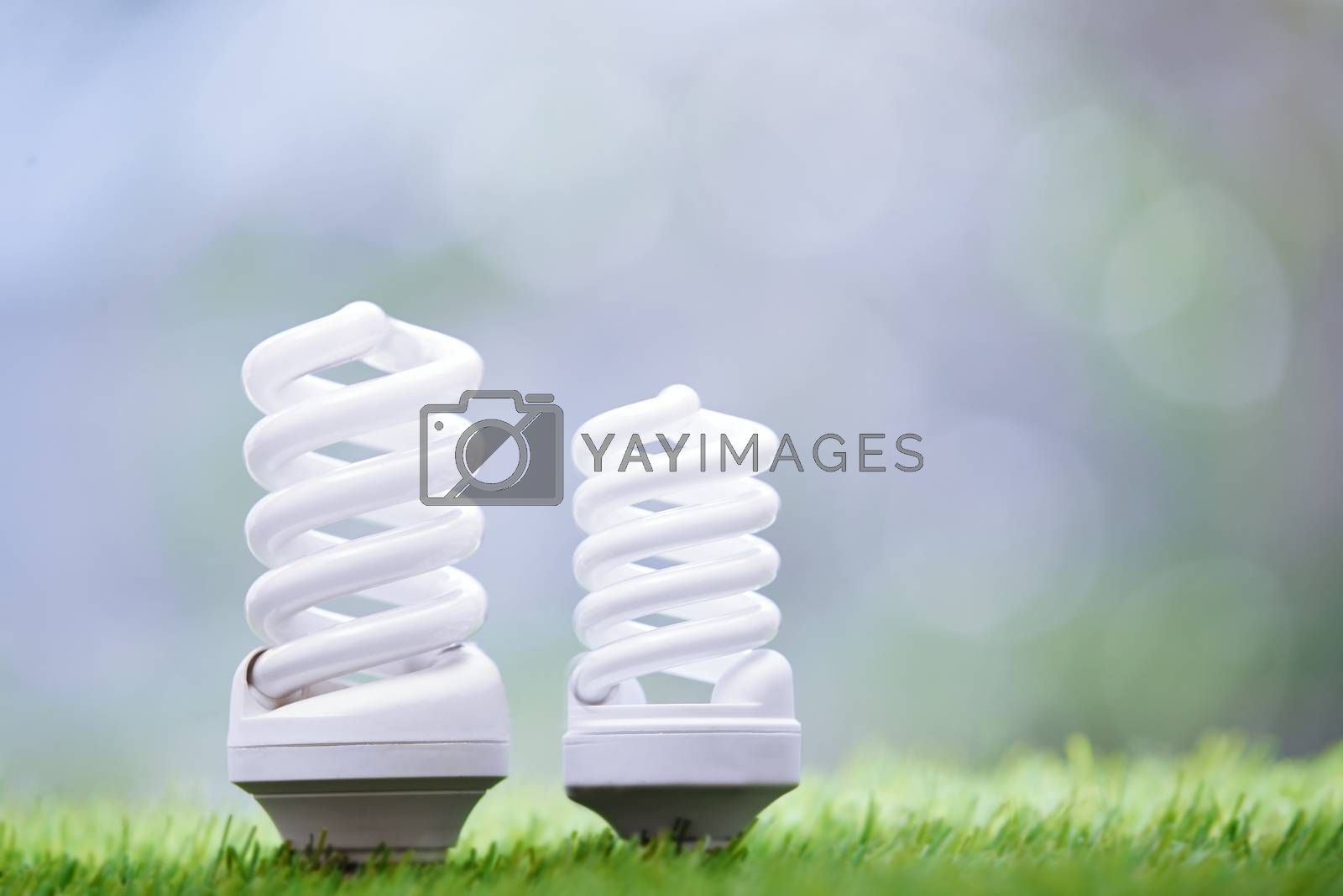 Energy saving bulbs in the grass. Close-up photo