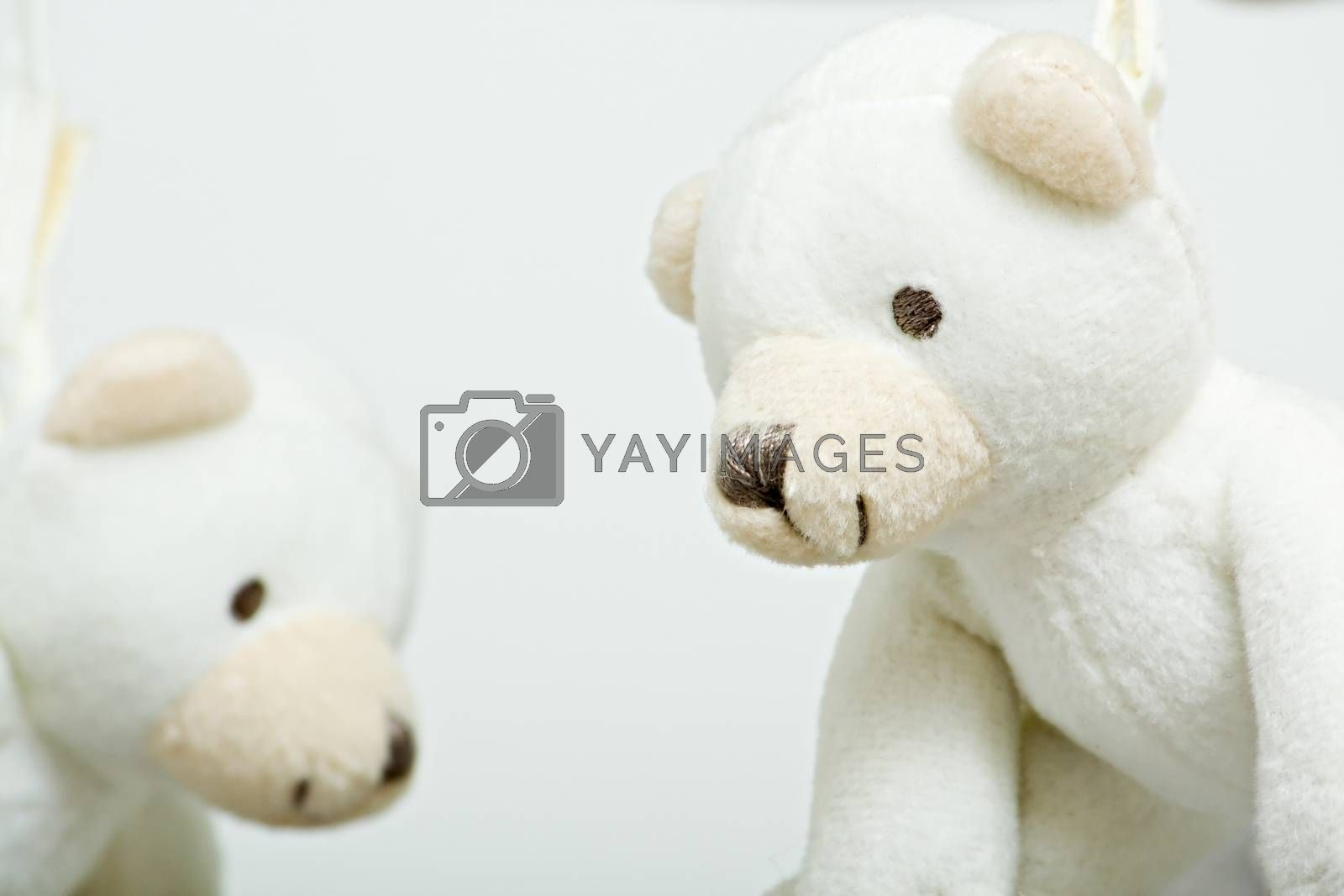 White teddy bears hanging from a childs mobile