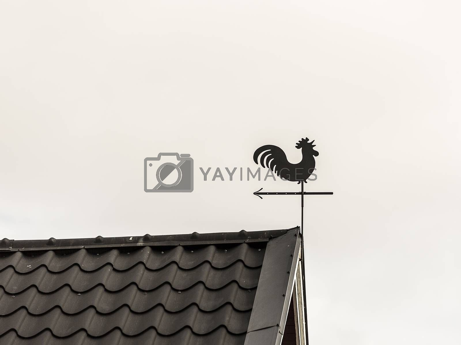 Rooster Weather Vane on Roof-ridge.