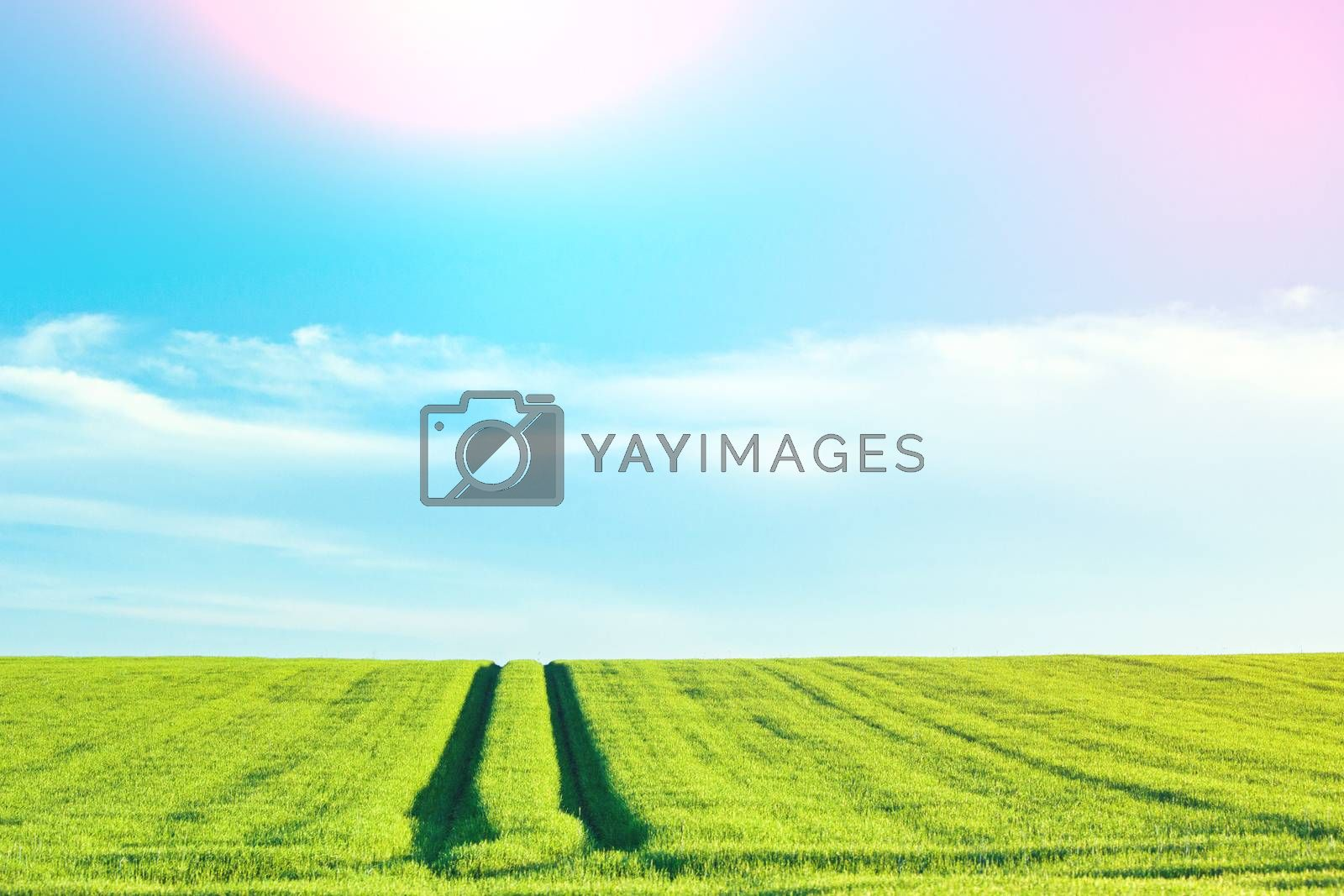 Rural countryside landscape with blue sky and sunlight