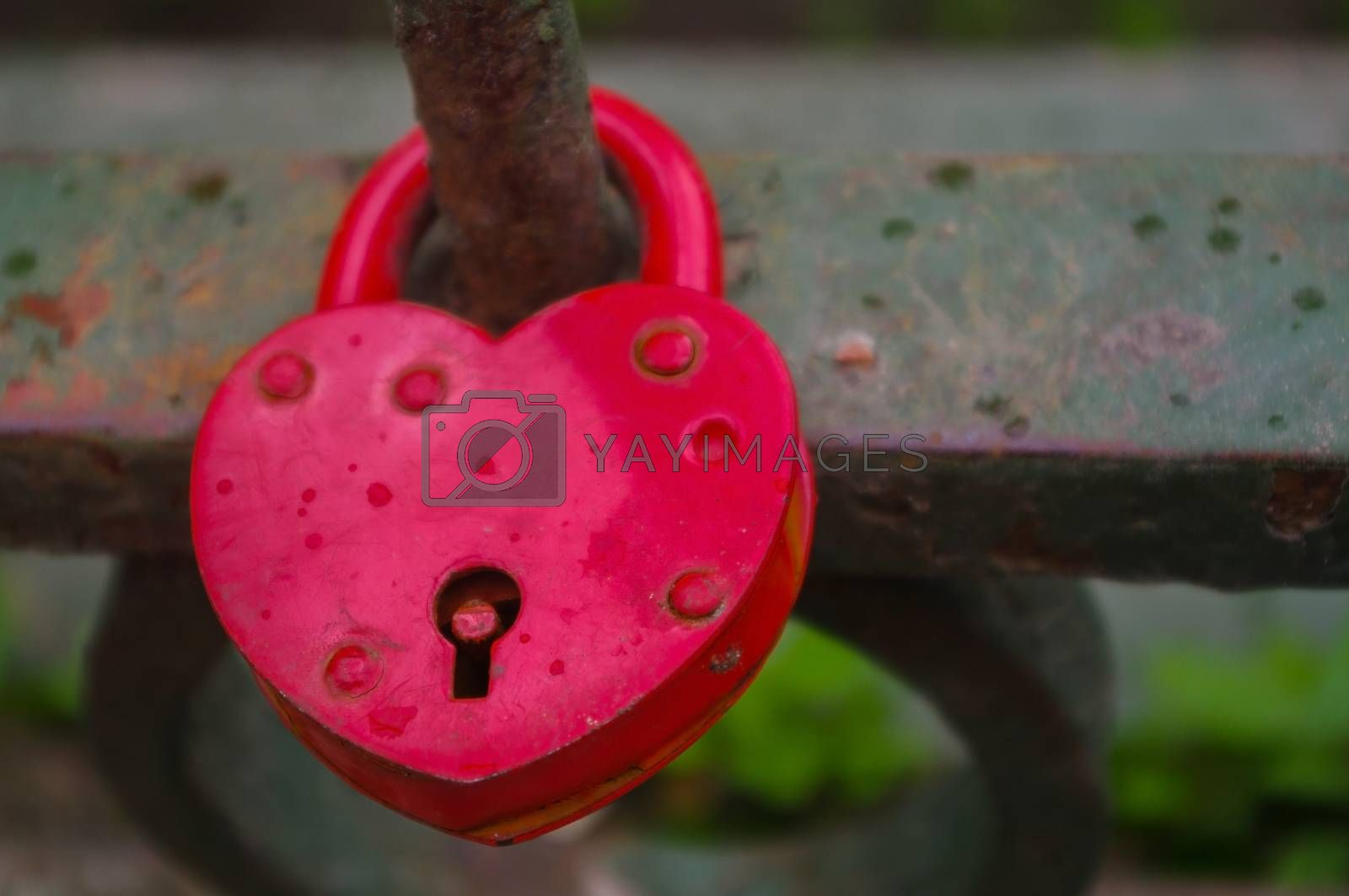 Red Padlock in heart style on the fence of a bridge