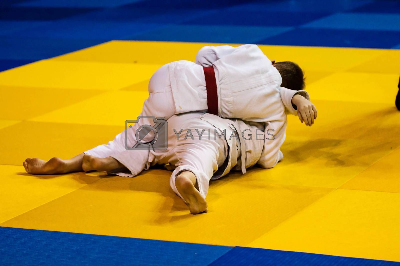 Boys compete in Judo by vladimirvasil