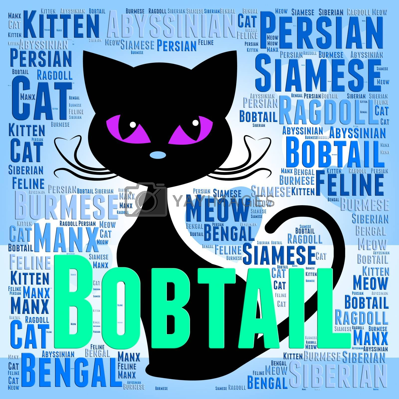 Bobtail Cat Showing Breeds Reproducing And Tails