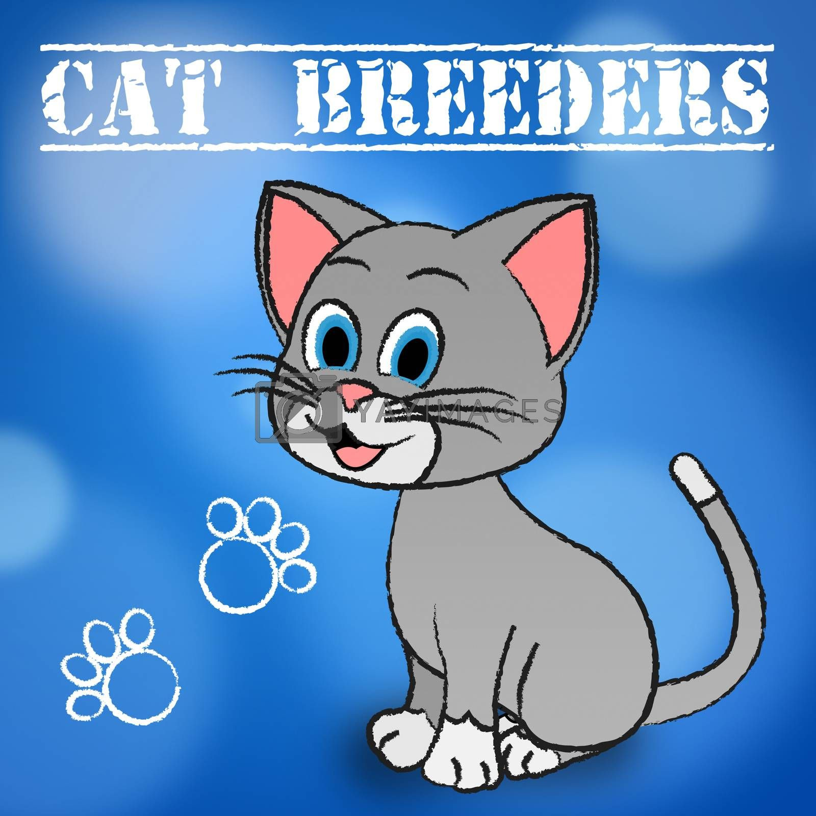 Cat Breeders Meaning Breeds Kitten And Reproducing