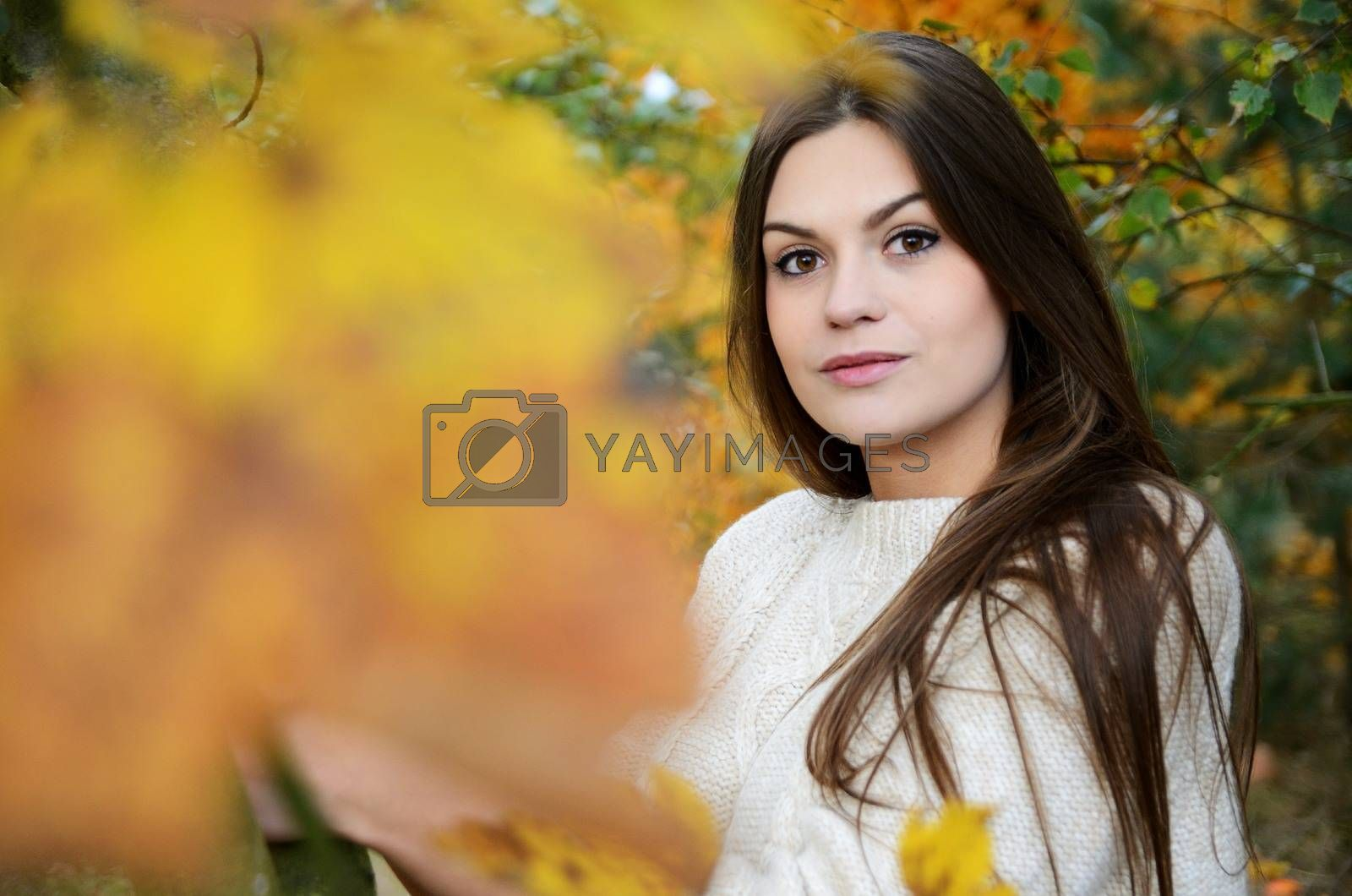 Polish forest with colorful leaves. Portrait of young female model with autumn scenery.