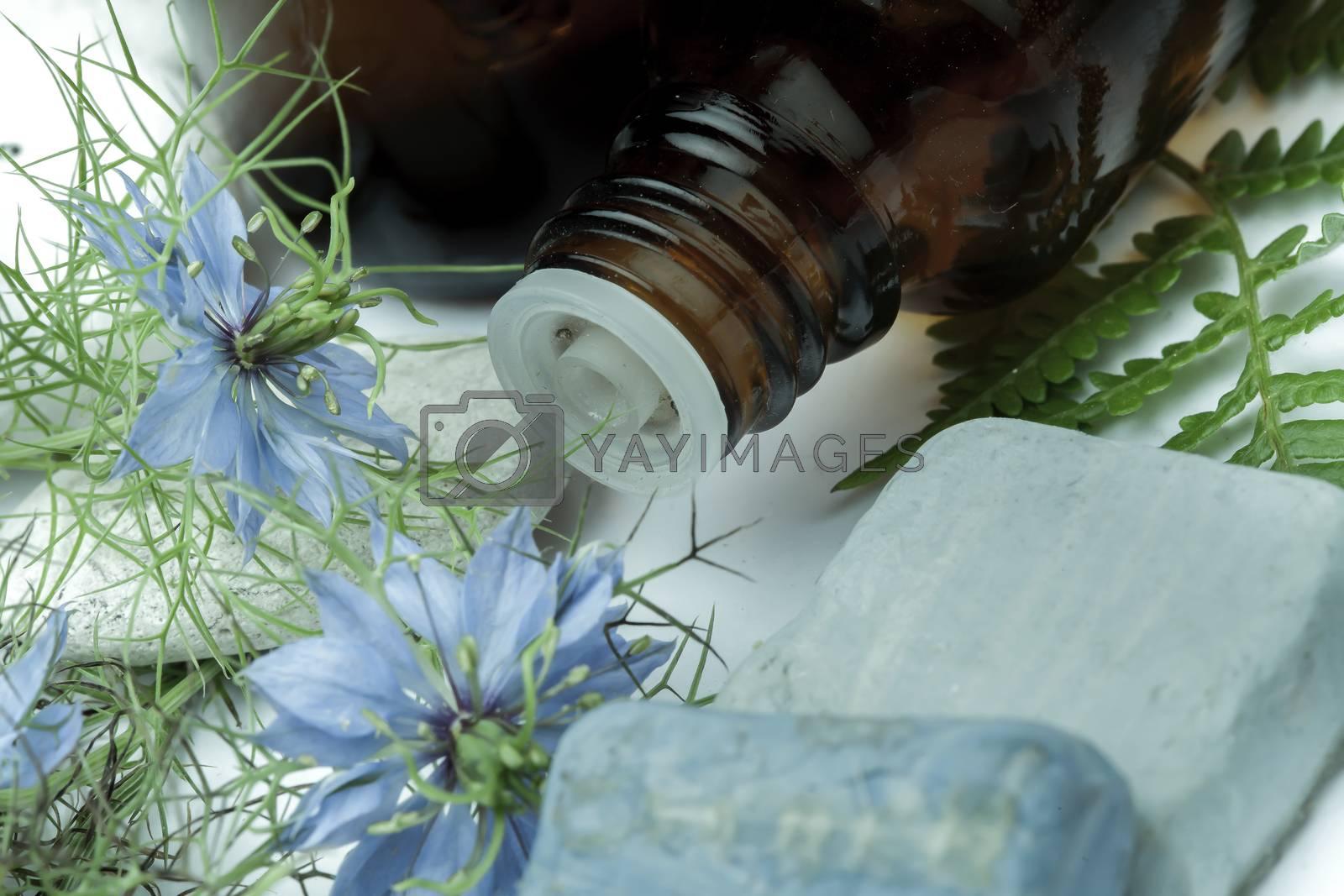 herbal medicine and flower