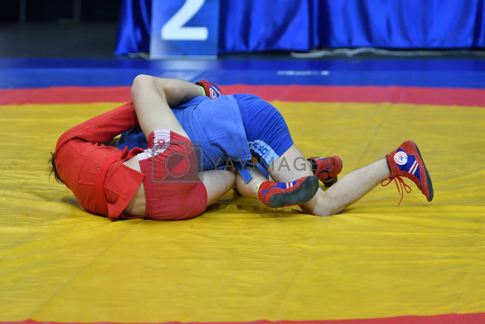 Orenburg, Russia - 29 October 2016: Boys competitions Sambo by vladimirvasil