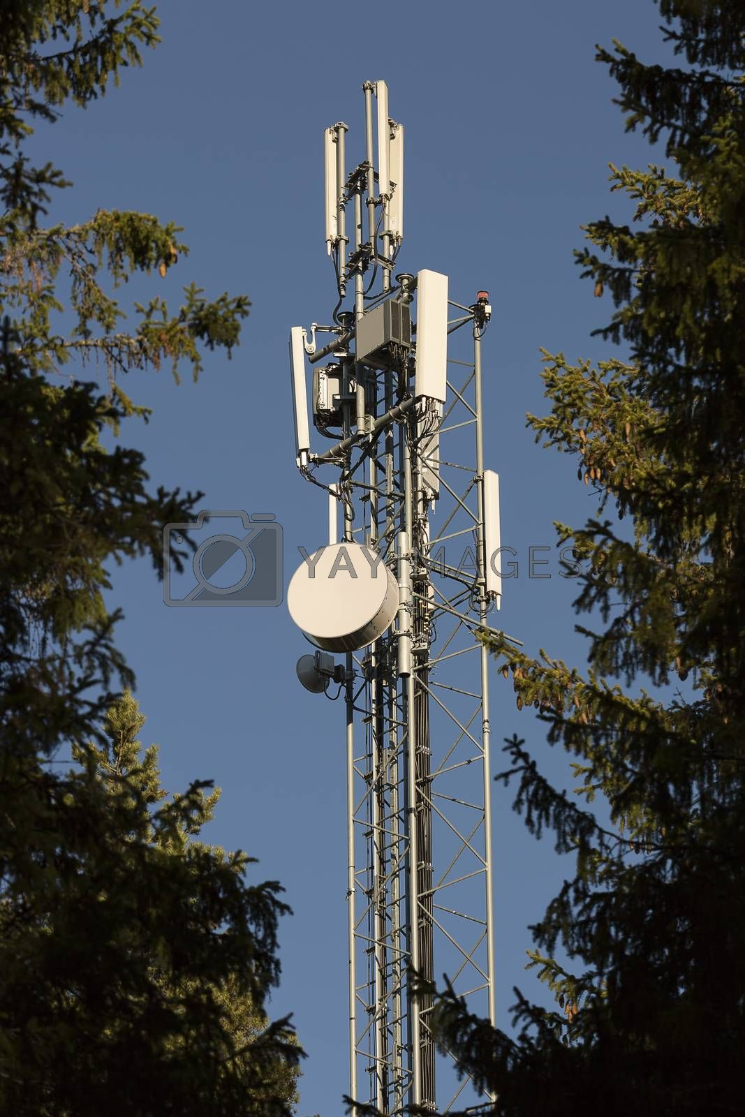 Cellphone Tower with Trees by Emmoth