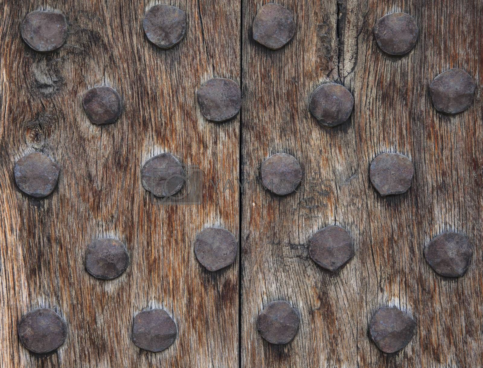 An old and rough wood surface with rusty metal round nails.