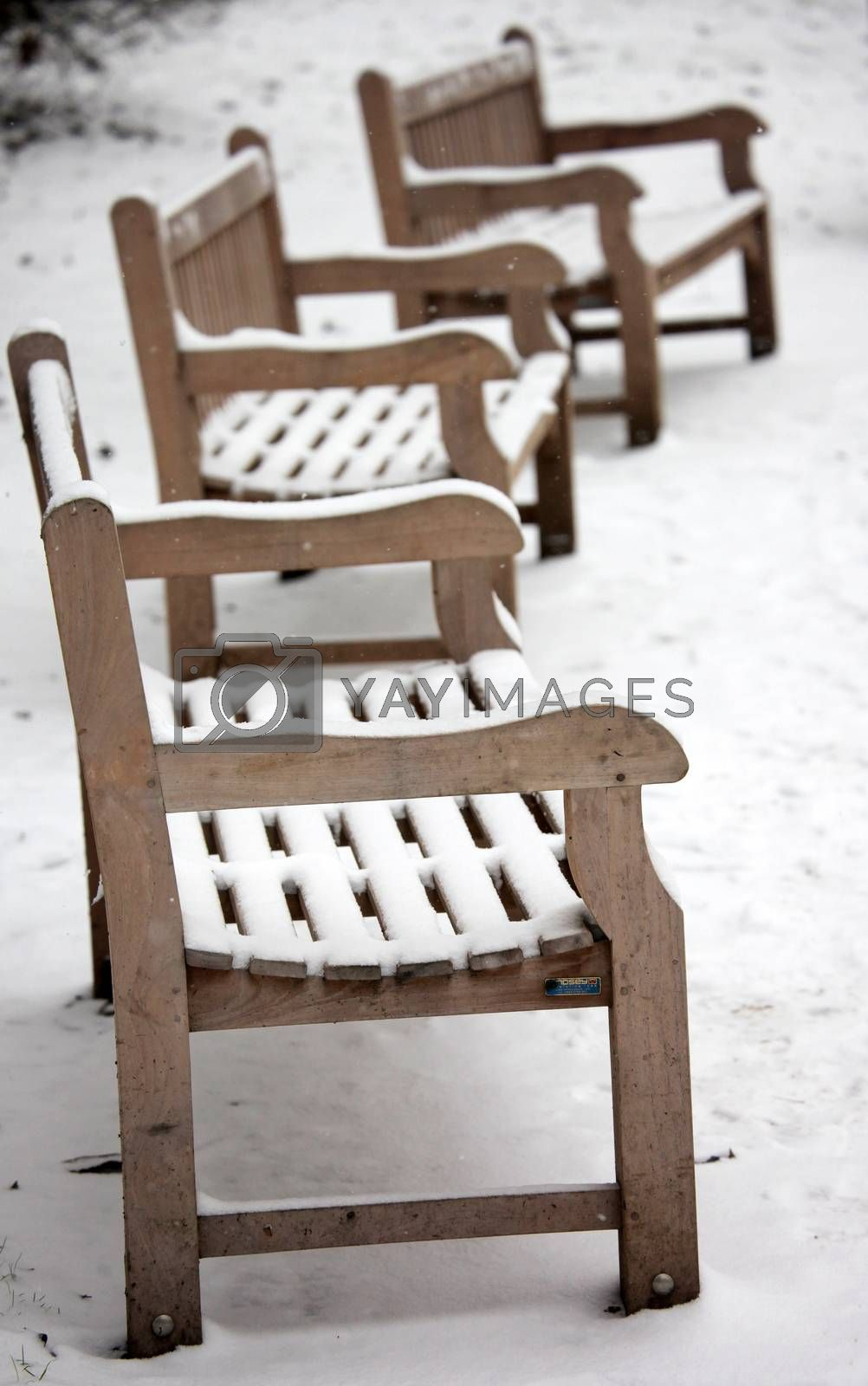 Three empty benches in the park on a cold winter day in London