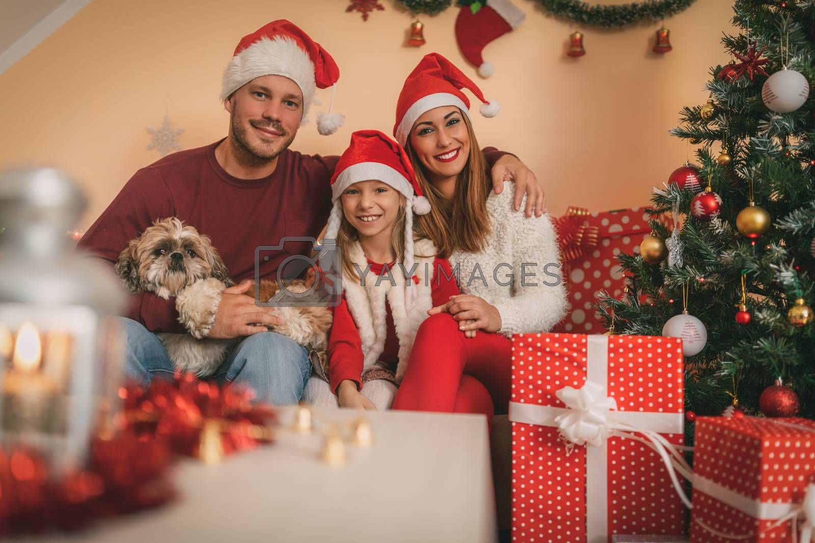 Beautiful happy family with their little dog is gathered together by a Christmas tree and gifts at the home. Looking at camera.