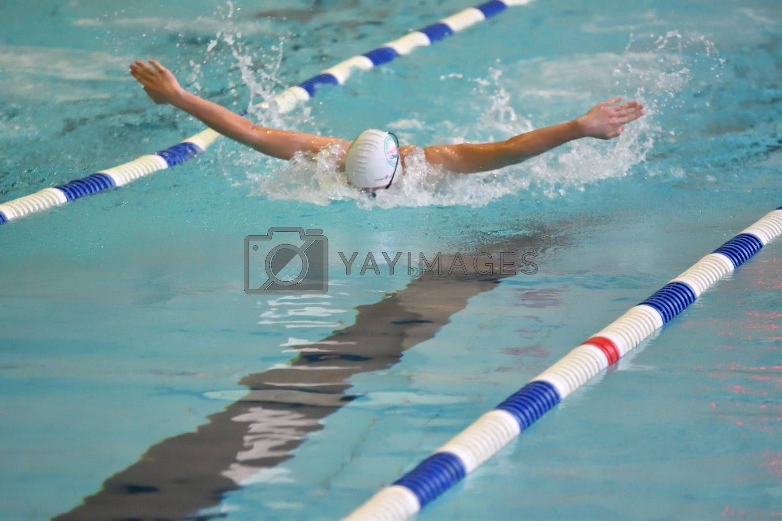 Orenburg, Russia - 13 November 2016: Boys compete in swimming Butterfly style on prizes the head of the city of Orenburg
