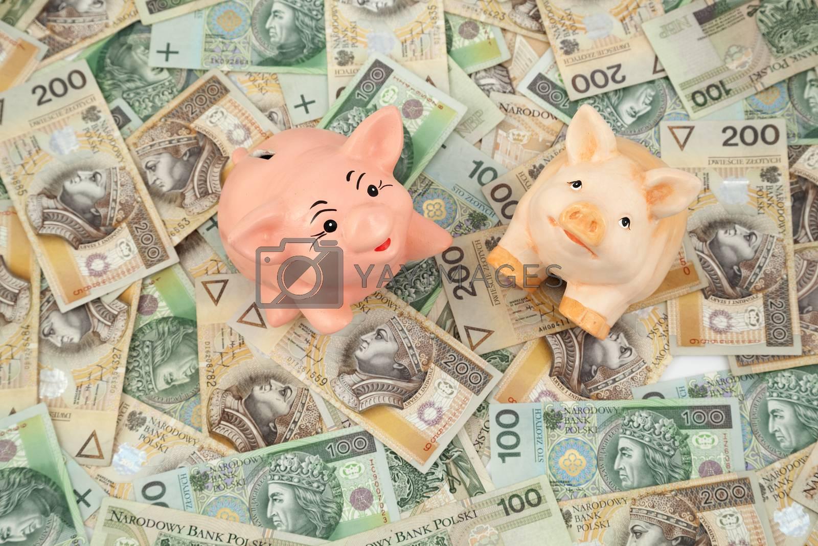 piggy with money by dabjola