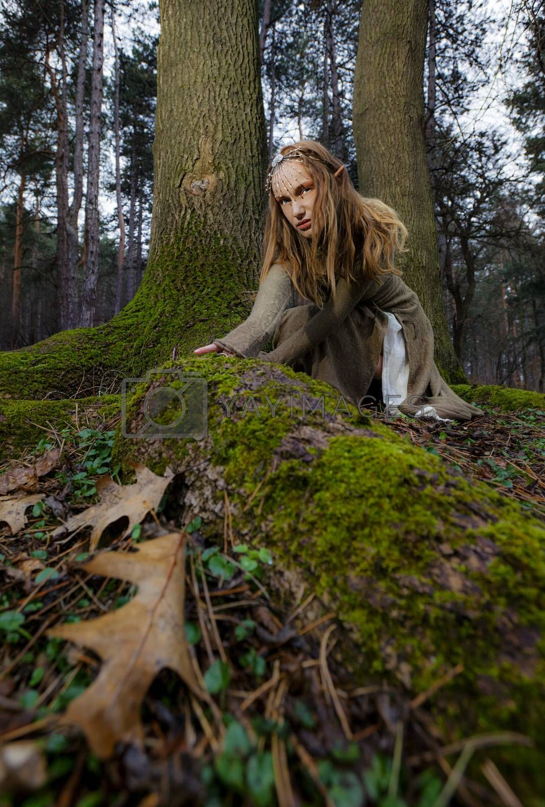 A portrait of a beautiful wild woman with elf ears  crawling in the forest.