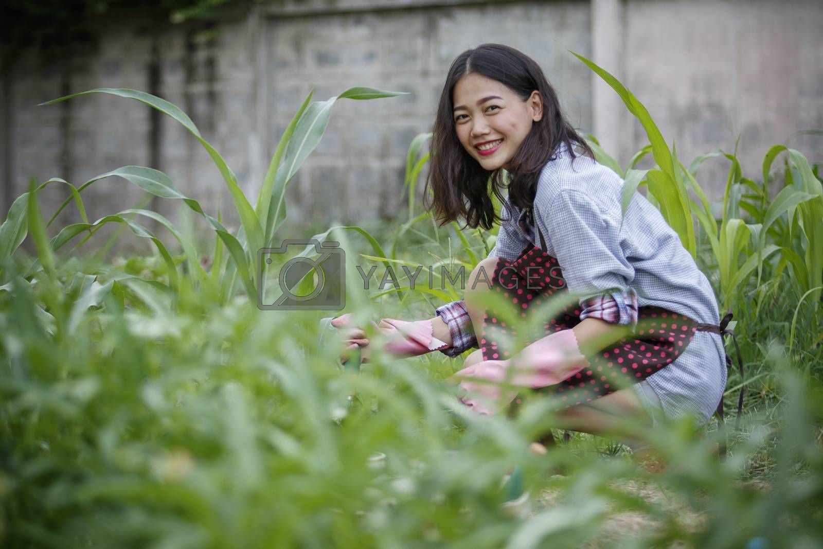younger asian woman in home gardening ,hipster people lifestyle