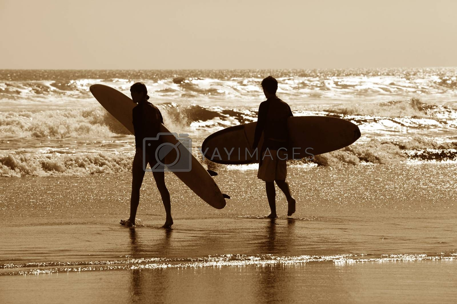 Silhouette of surfers in golden sunset light. Bali