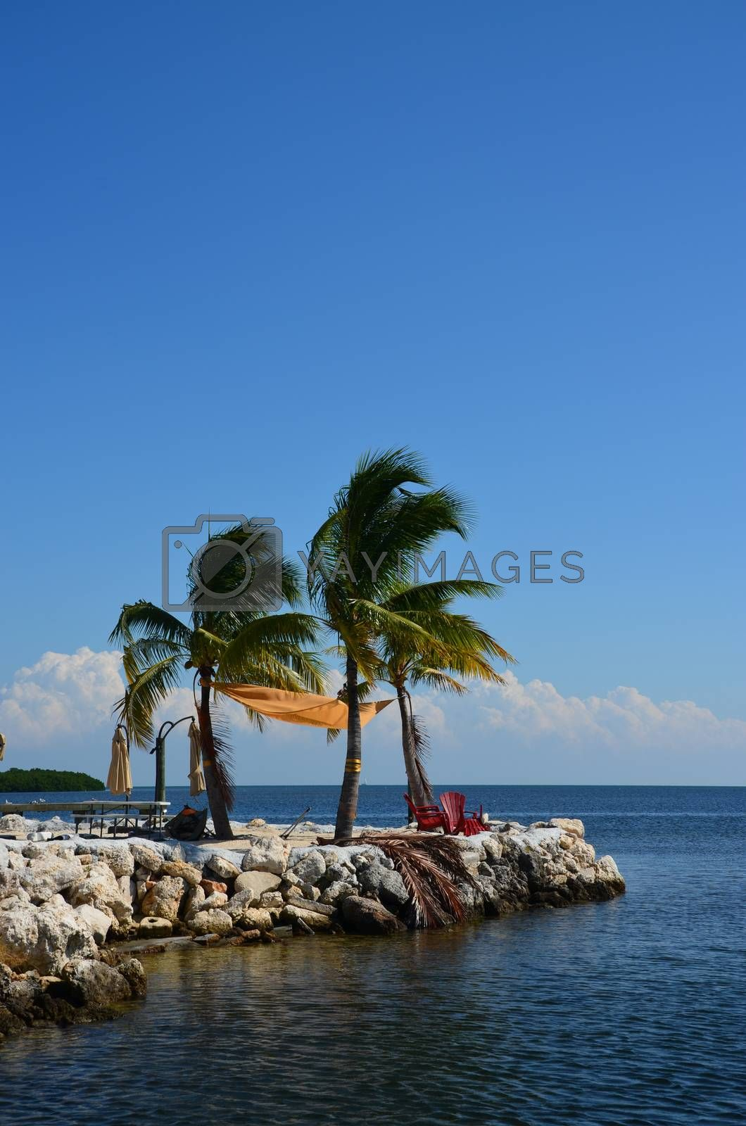 A quiet place to sit and enjoy the ocean in the florida keys. Two charis and a few palm trees complete the scene.
