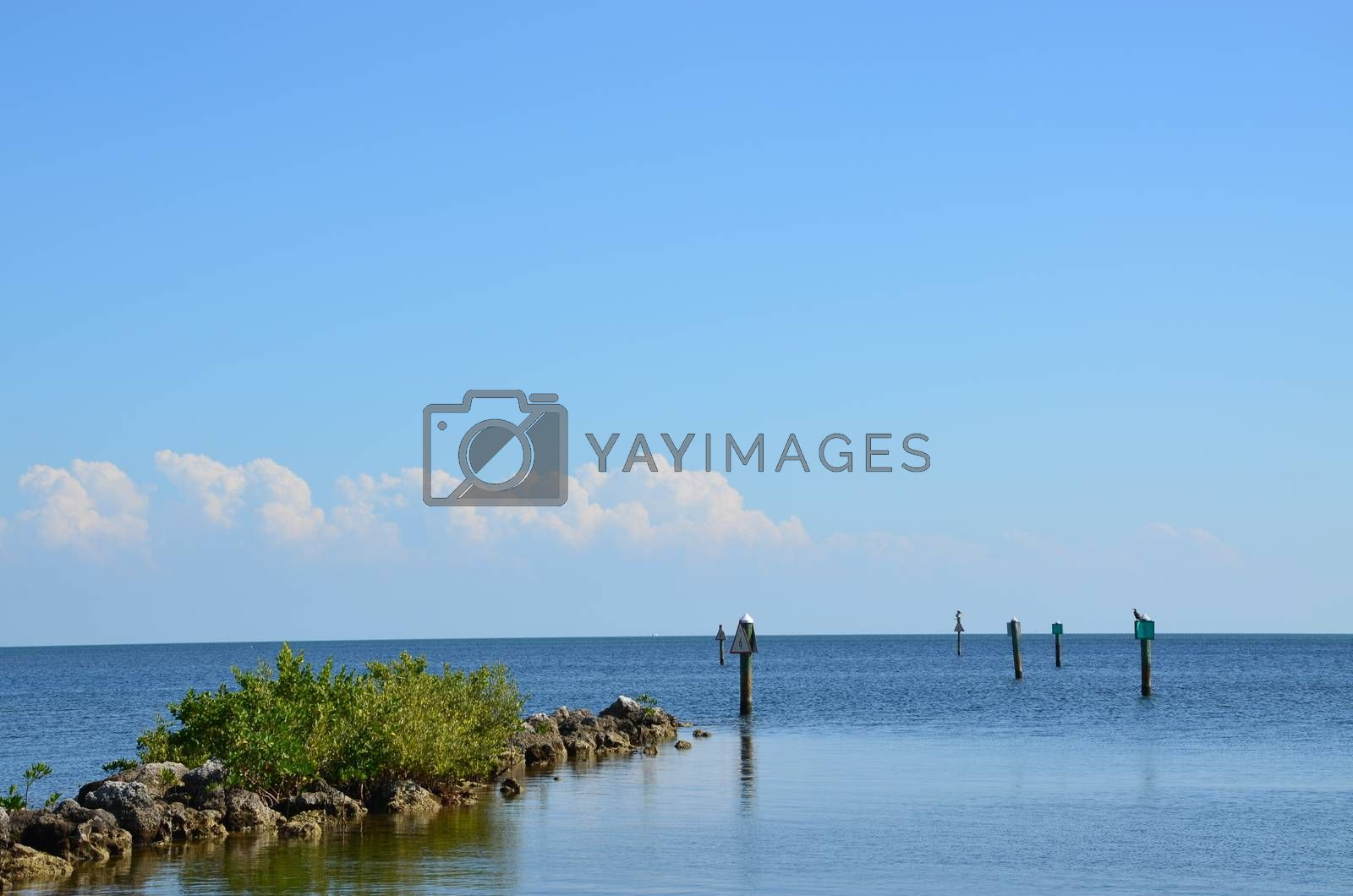 A clear channel to the dock for boats on a sunny day