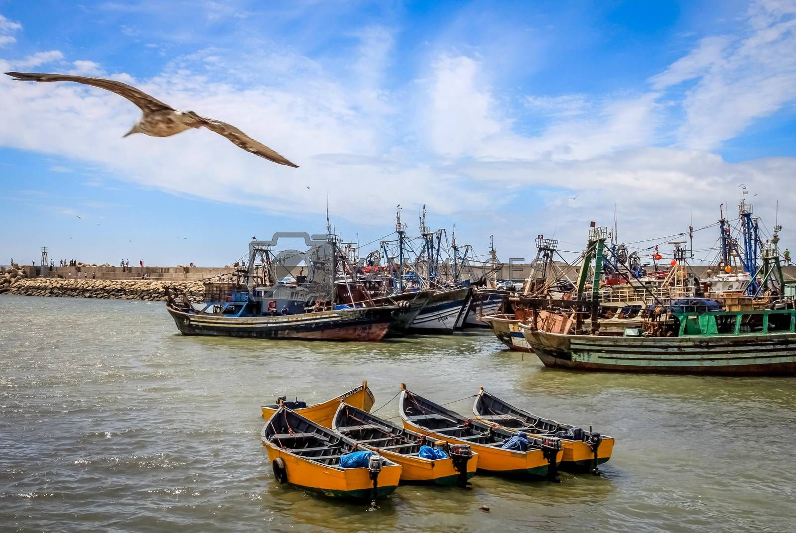 Boats in the old port in the city Essaouira, Morocco
