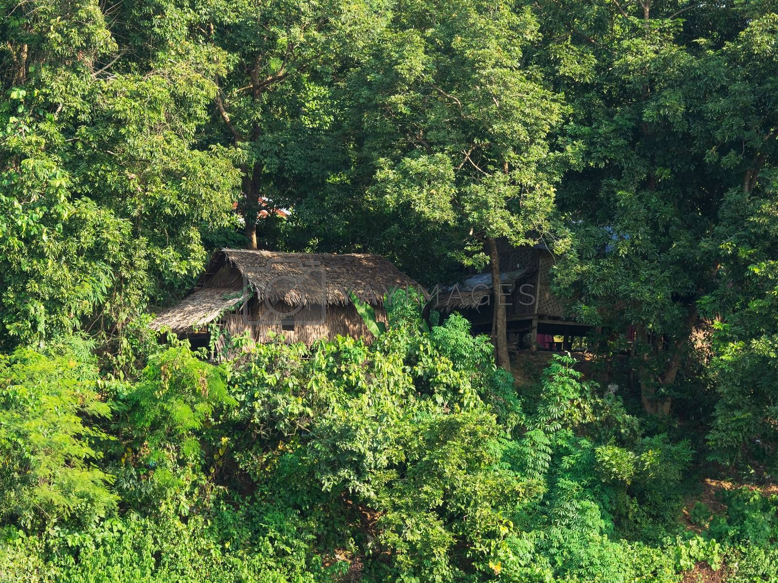 Traditional straw house at a tropical forest in Mrauk U, an ancient town in the Rakhine State of Myanmar.
