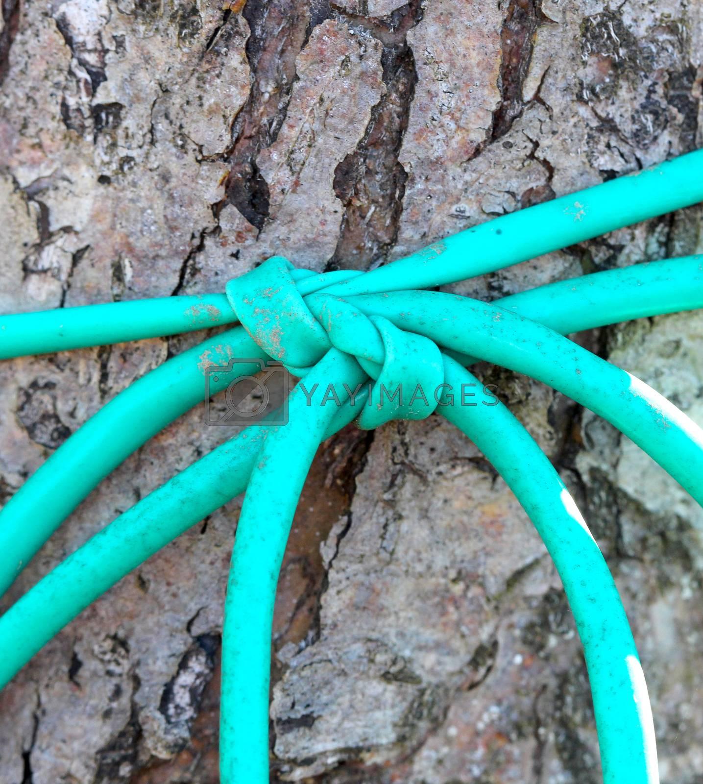Royalty free image of plastic rope macro by nehru