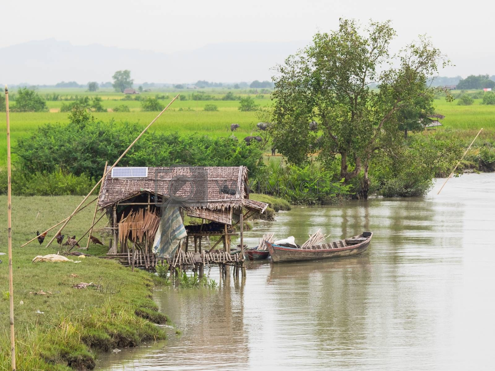 House on stilts at the riverside of the Kaladan River, near Mrauk U in the Rakhine State of Myanmar. Rice fields in the background. Solar panel on the roof of the house.