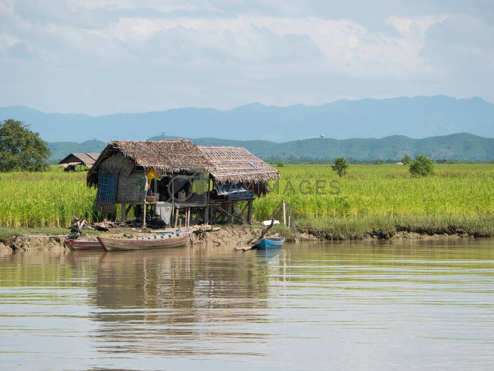Traditional farmhouses made from straw along the Kaladan River in the Rakhine State of Myanmar.