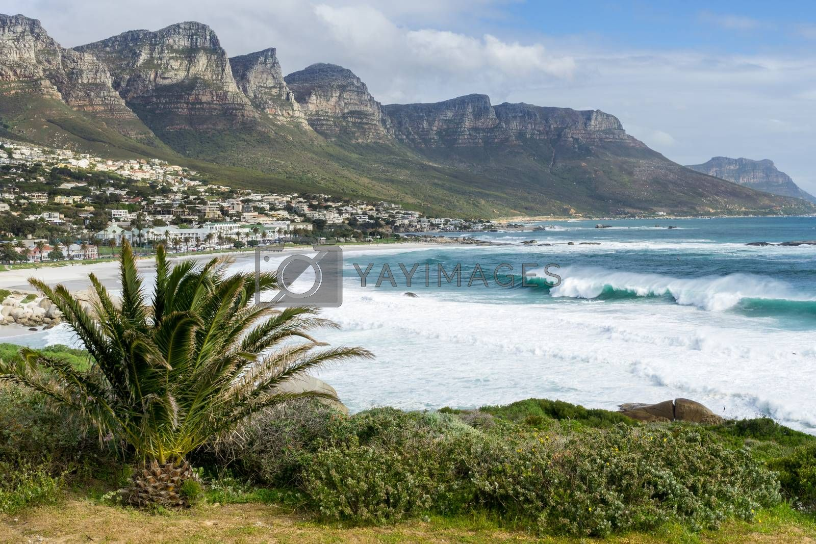 Royalty free image of Beautiful Western Cape by derejeb
