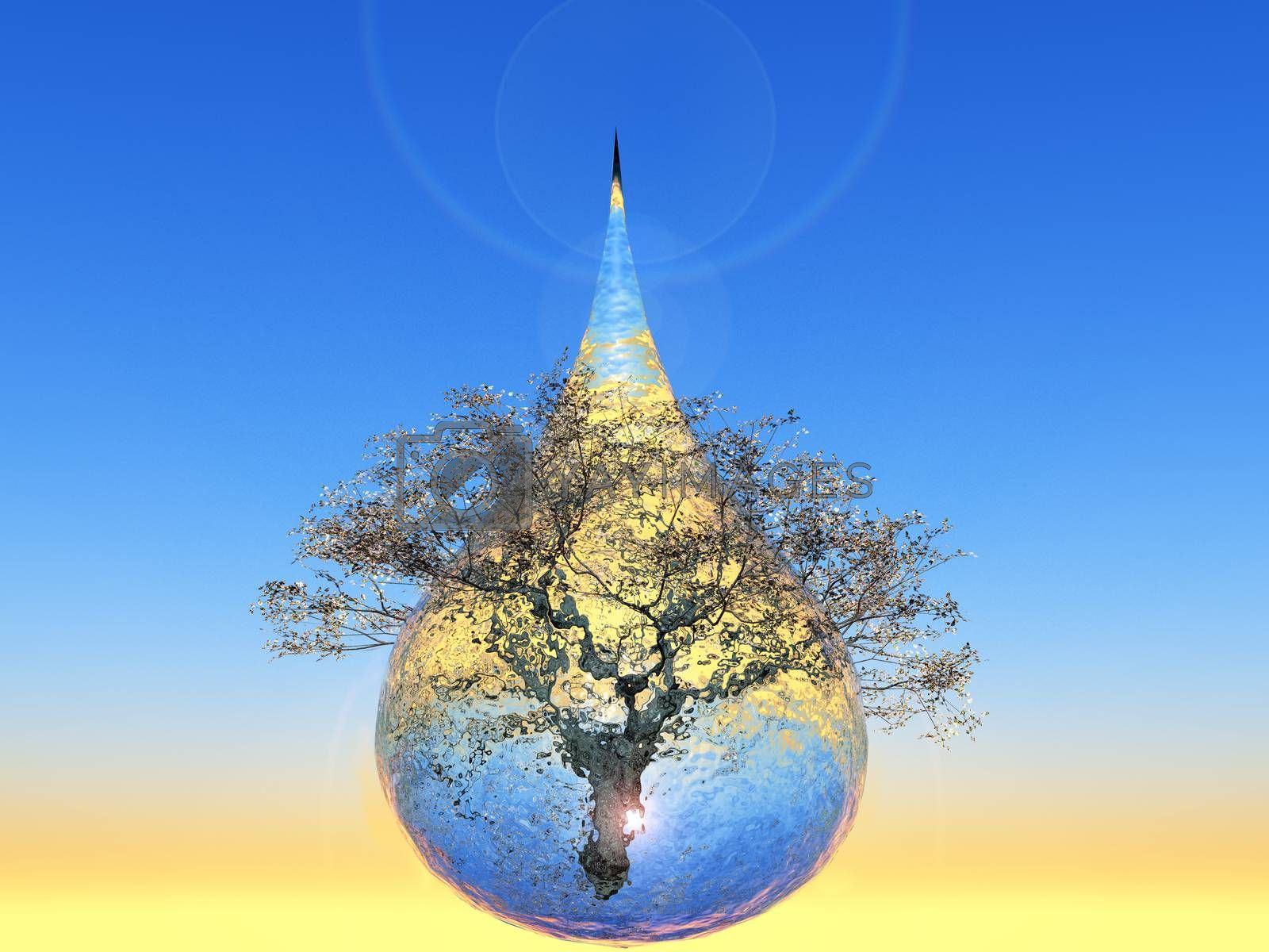 a tree inside a water drop