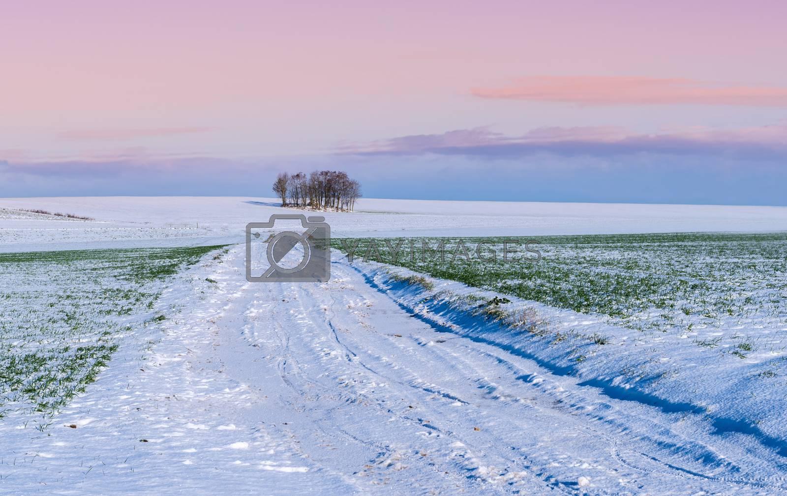 snowy countryside by gufoto