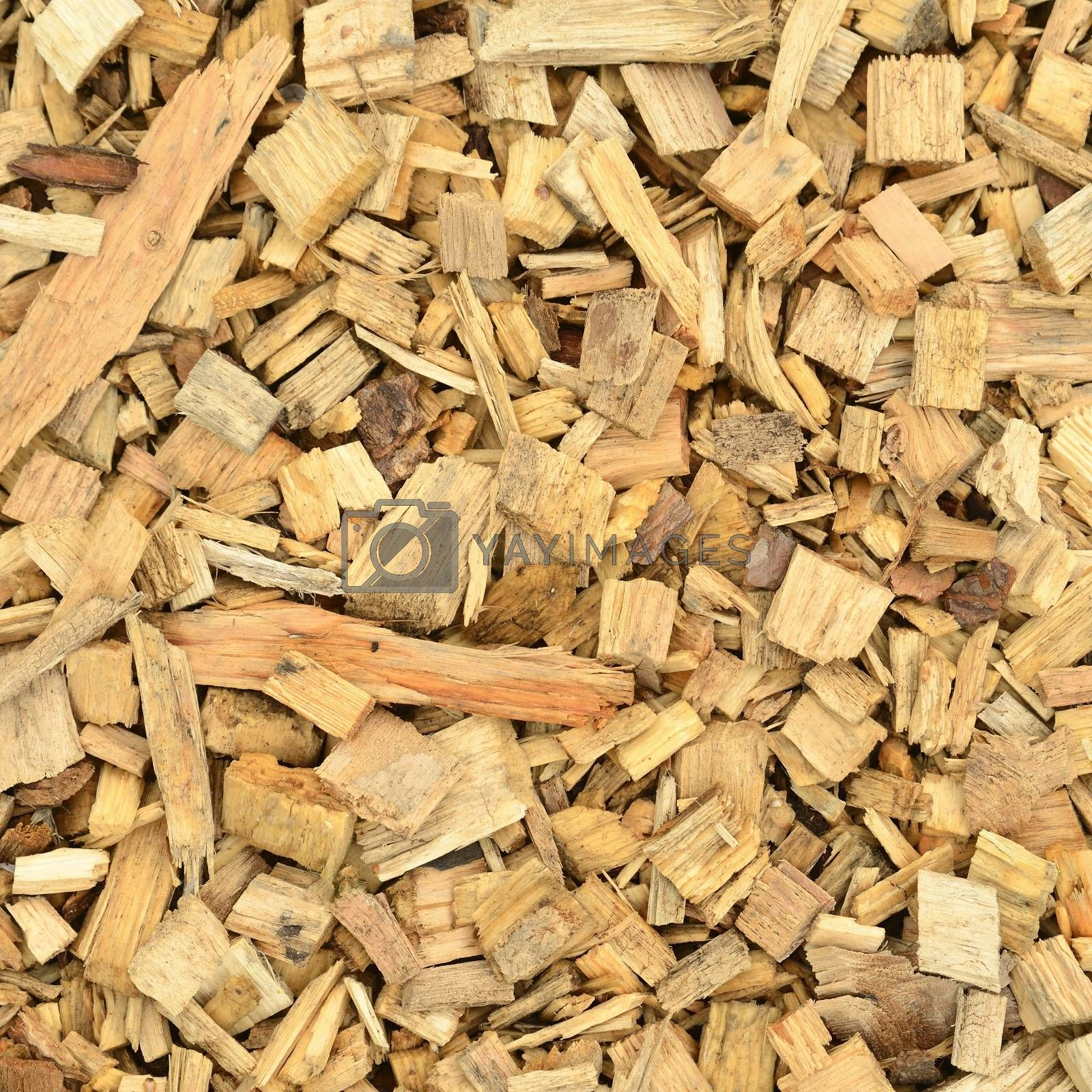 Close up of wood chip.