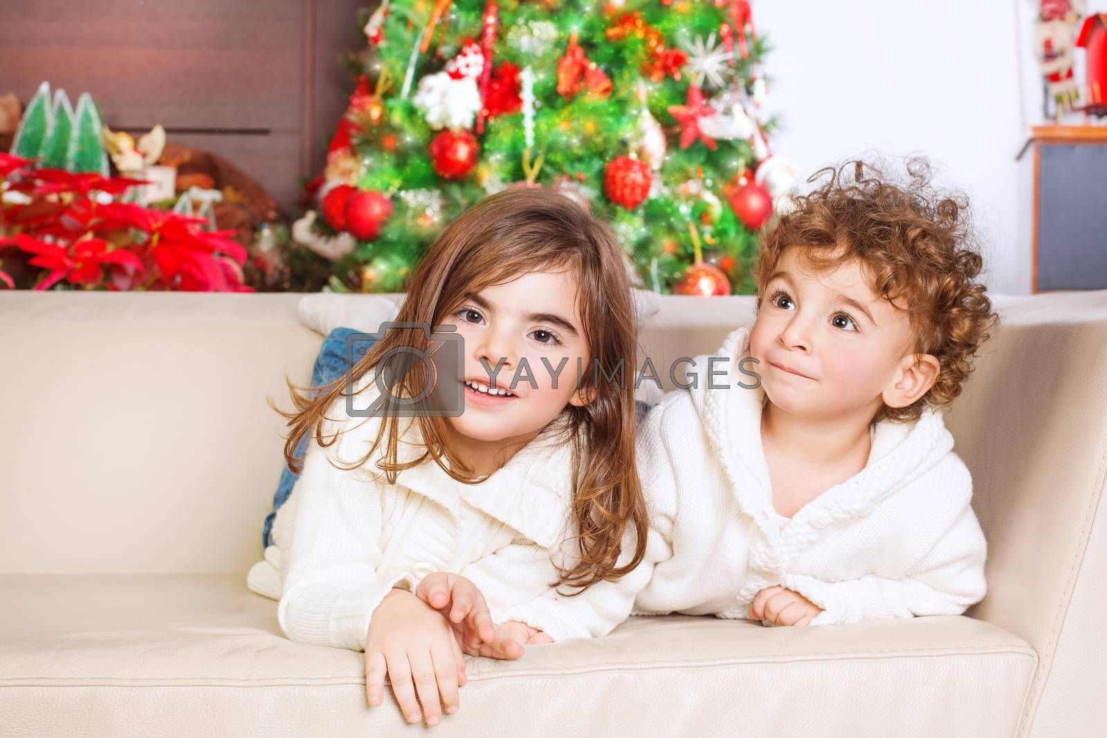 Portrait of cute little brother and sister having fun at home, spending happy winter holidays, with pleasure playing games on the sofa near Christmas tree