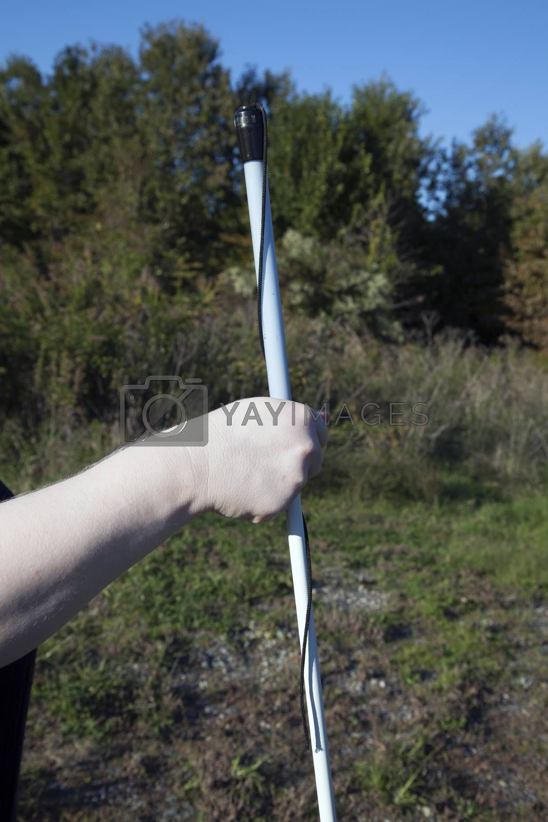 Person holding walking cane in nature