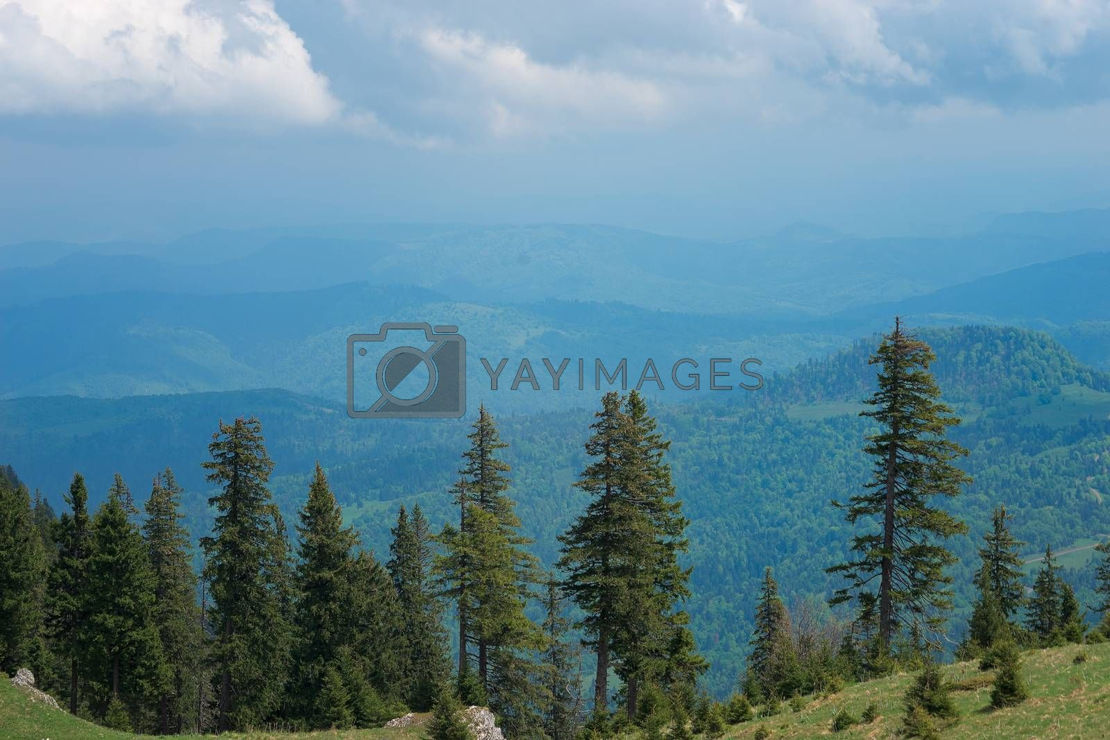 Royalty free image of Seven Ladders Canyon and Piatra Mare by adonis_abril