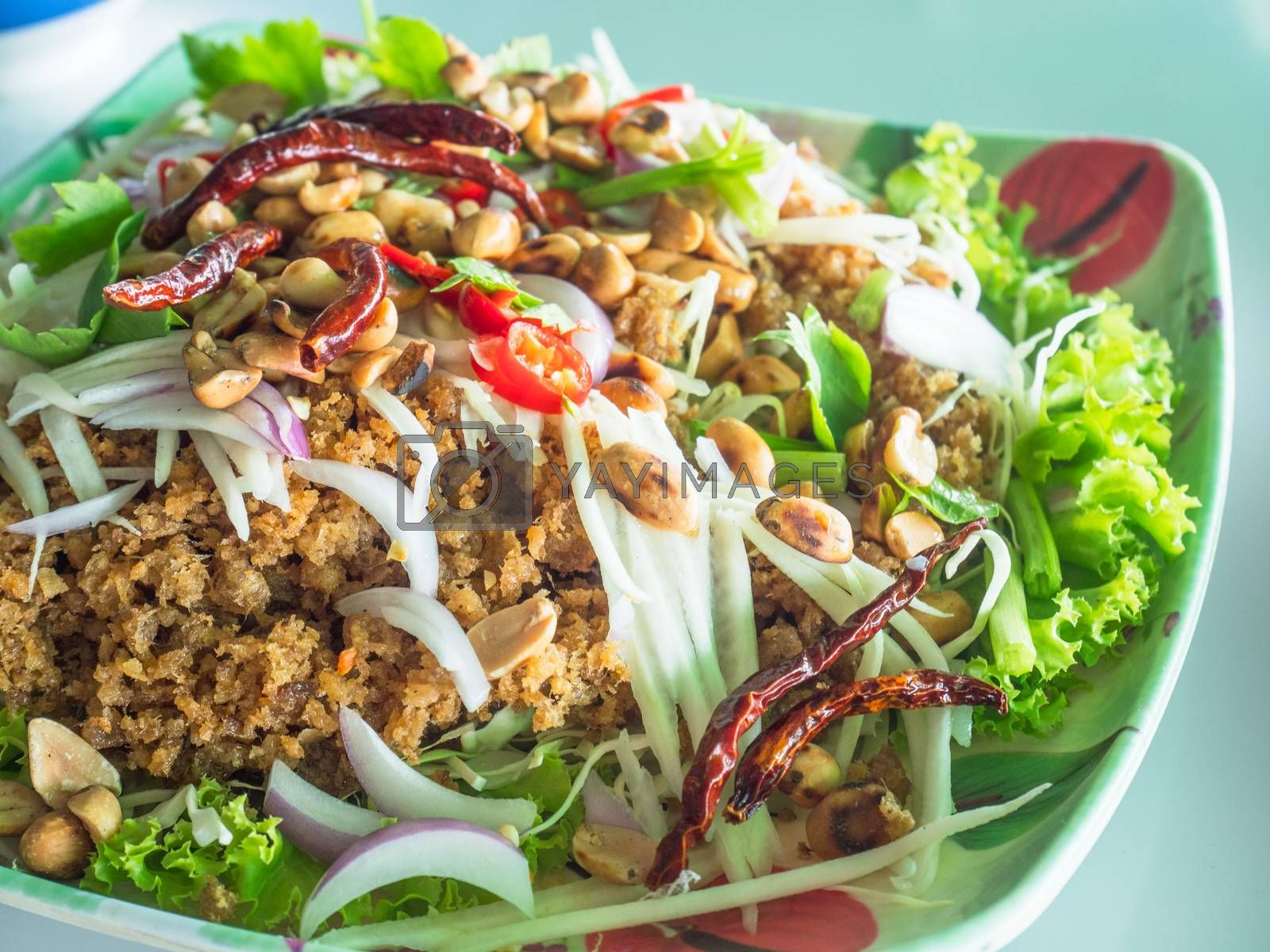 Yam pla duk foo, a classic Thai meal, consisting of minced and fried catfish, shredded green papaya, fresh and dried chili pepper, dry roasted peanuts, raw onion, salad and a dressing made from lime juice and garlic. Shallow depth of field.