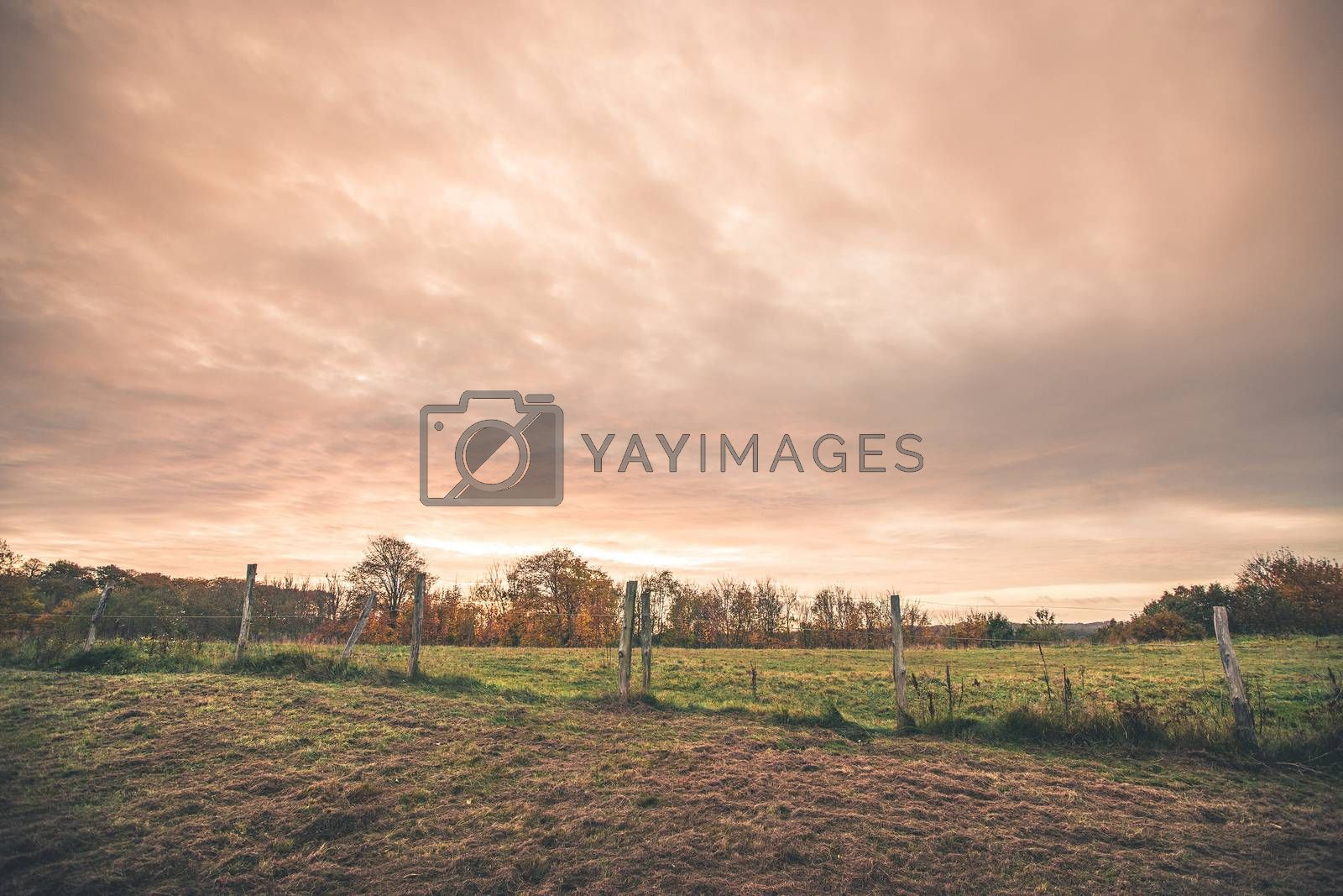 Countryside landscape with a wired fence on a field in the sunset in a rural environment