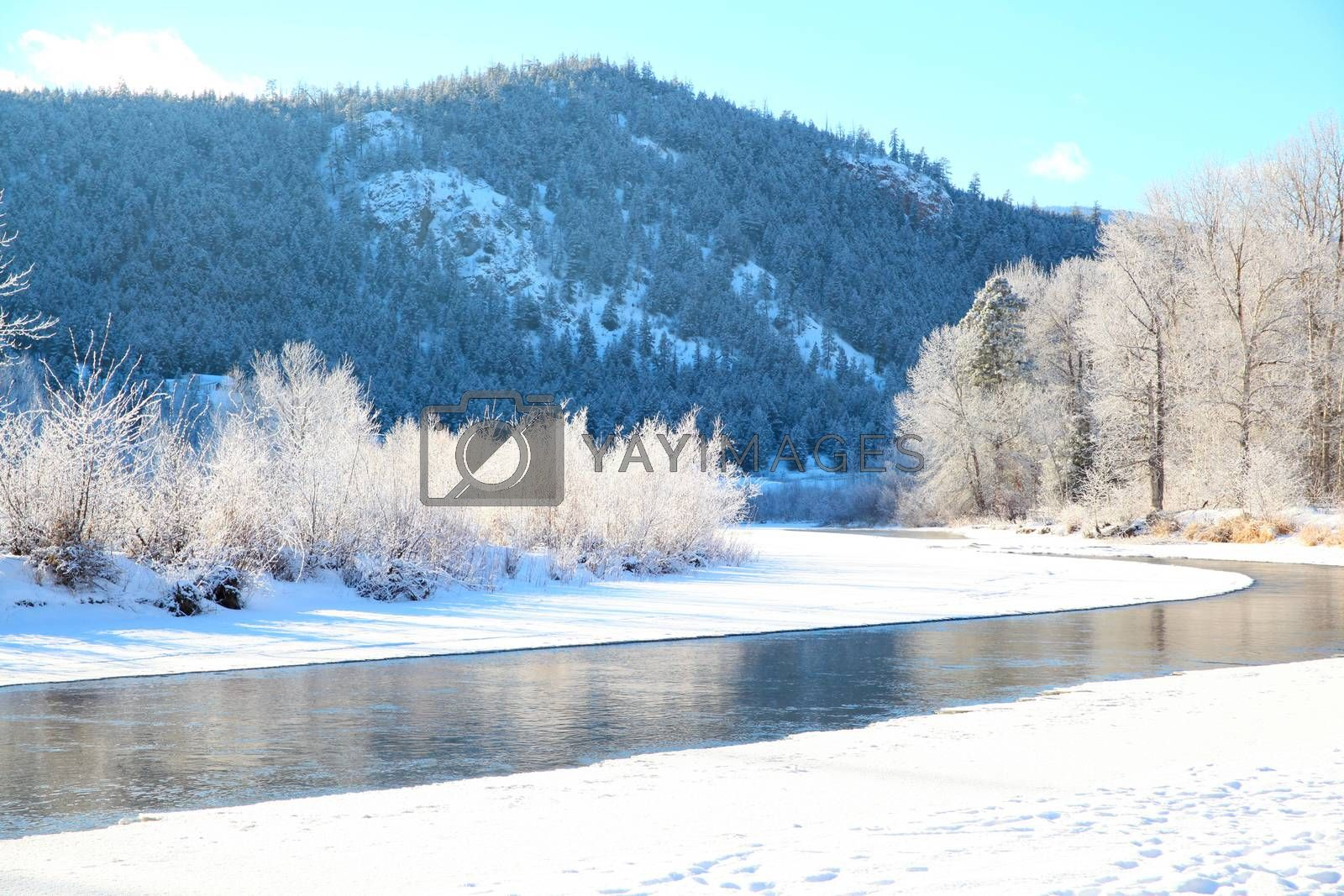 Frozen river with trees and mountain in the background