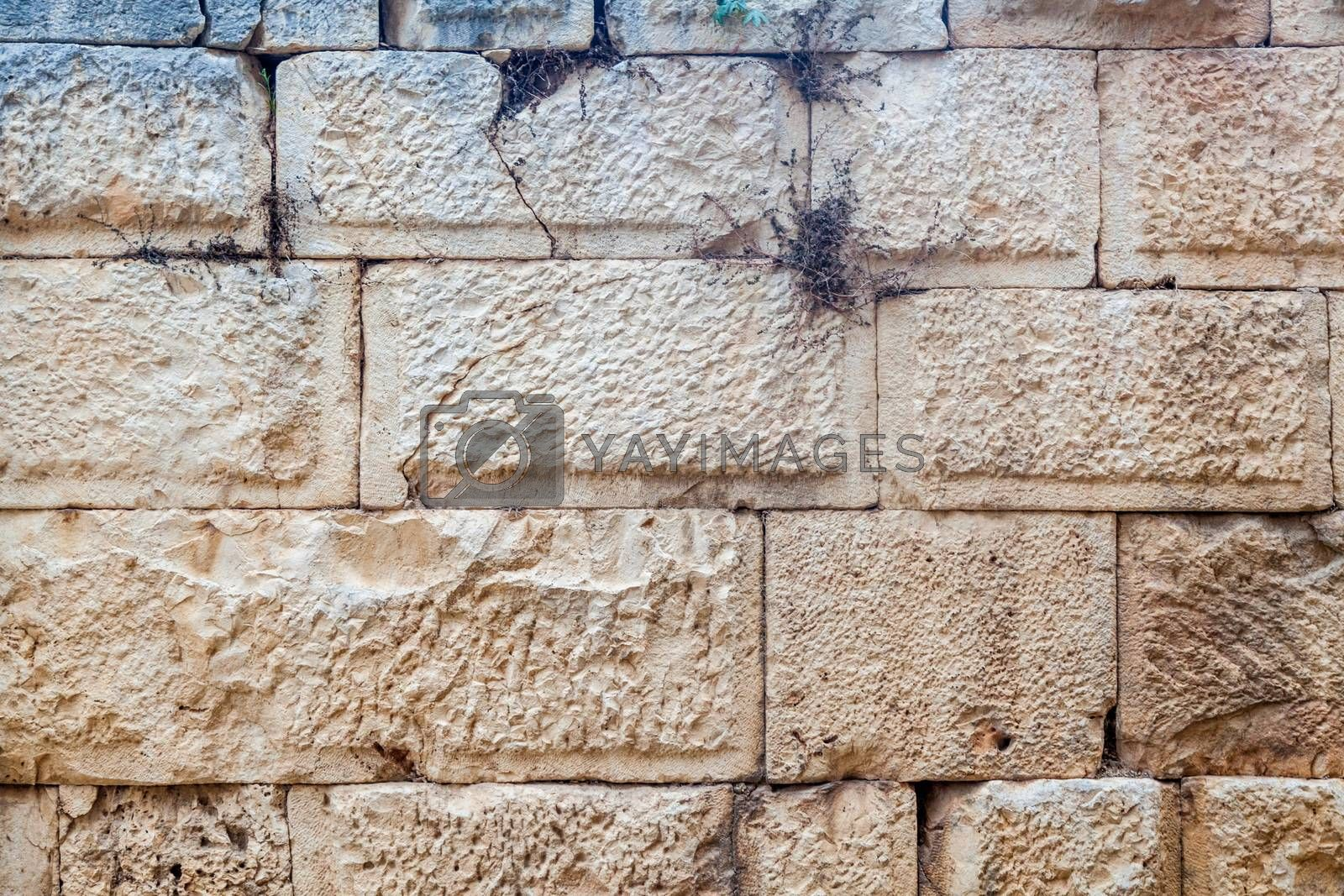 Detailed front view of ancient brick wall