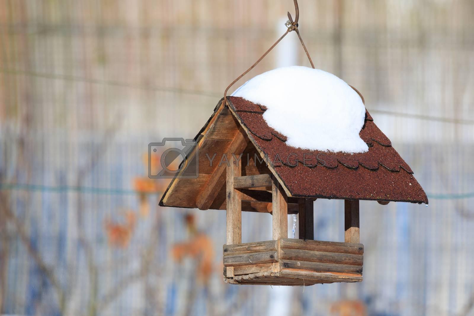 homemade wooden birdhouse, bird feeder installed on winter garden