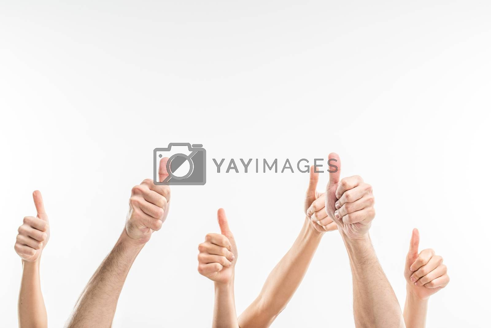 Partial view of people showing thumbs up on white