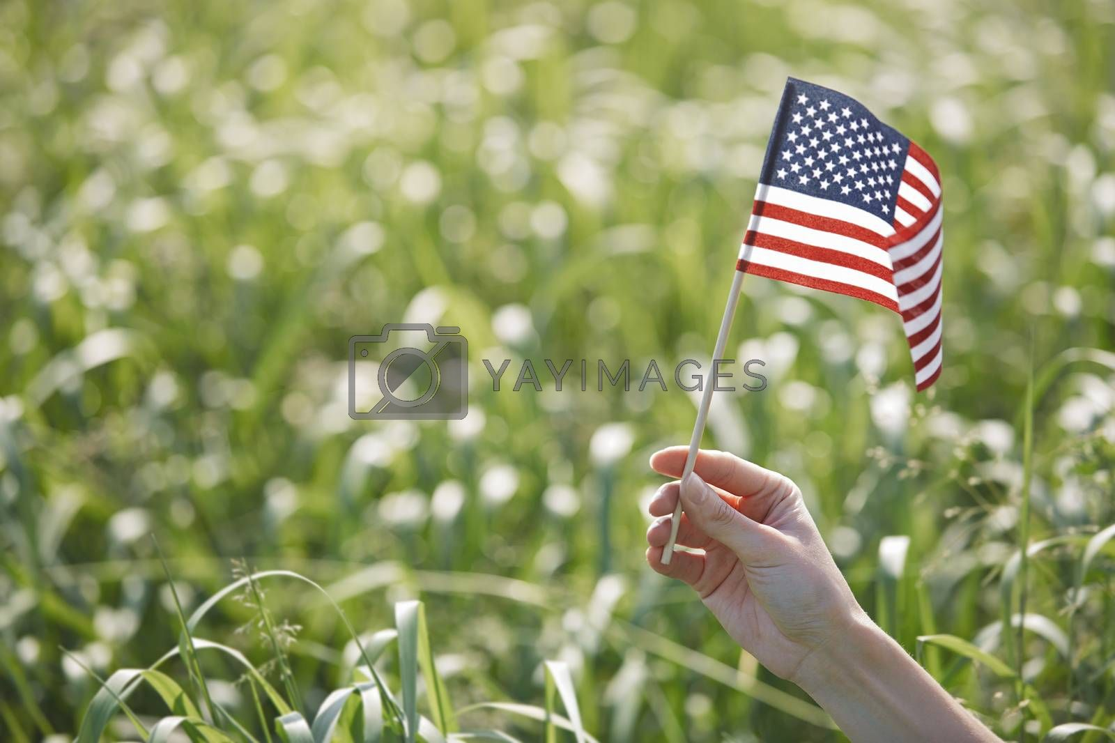 Hand of woman holding US flag in a grassland