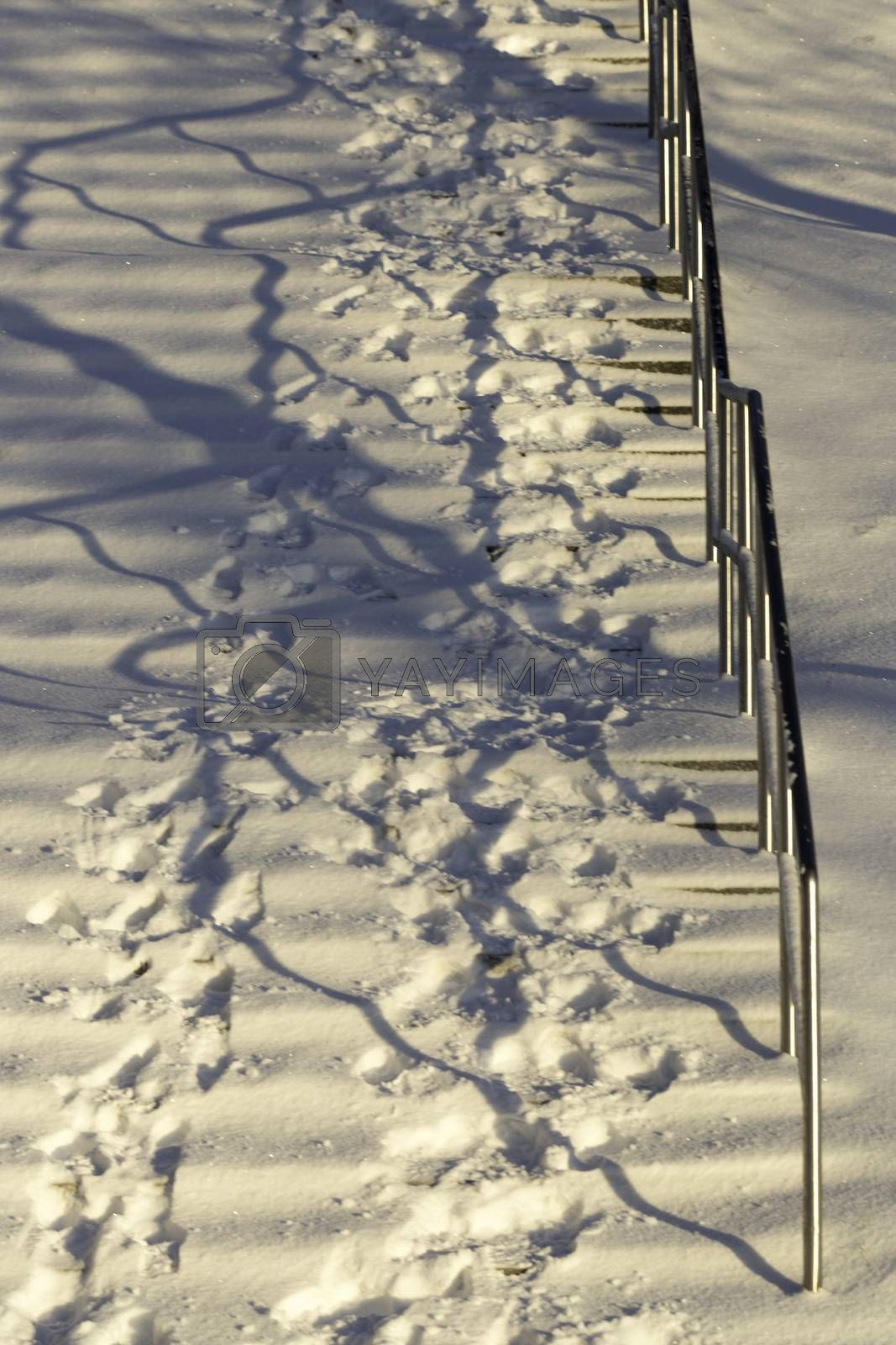 Footsteps in Snow up Stairs in winter.