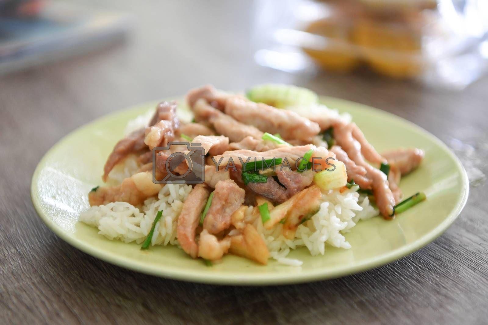 Fried Pork with Garlic Pepper on Rice, Thai food.