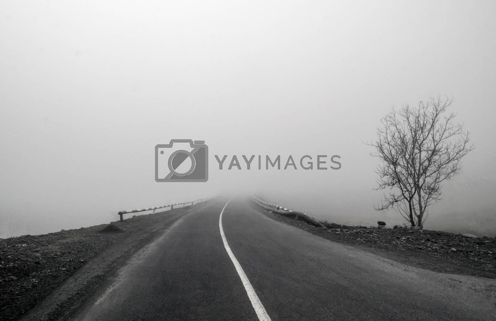 Foggy Country Road. Fog creates a feel of emptiness as it leads to seemingly nowhere. Ilisu, Gakh, Azerbaijan