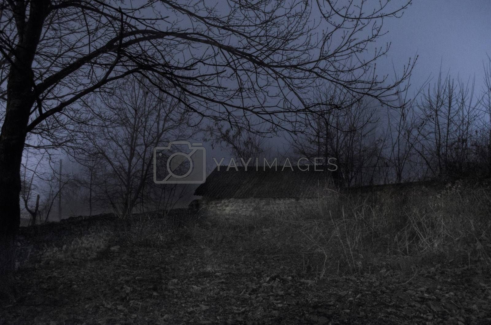 house in fog at night in the garden, Landscape of ghost house in the dark forest.