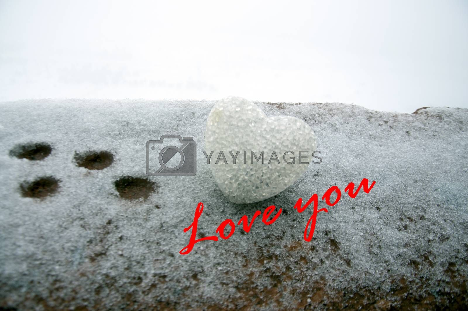 abstract glass heart on snow at night. Card for a Valentine's day. Forgive me, miss you love you words red or greyscale colored. selective focus. Foot paths on snow